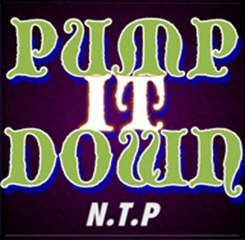 PUMP IT DOWN [Feat. mcKY] / N.T.P