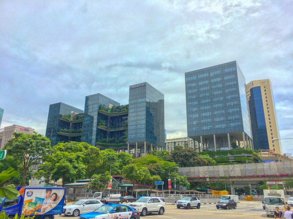 Singapore ( シンガポール ): 旧正月のチャイナタウンへ!